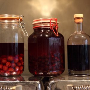 Infusions